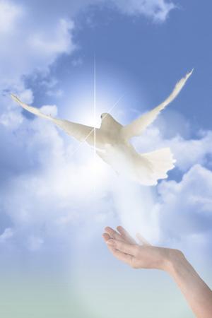 The best cosmetic for voice is prayer ( زیباترین آرایش برای صدای شما دعا به درګاه خداوند )